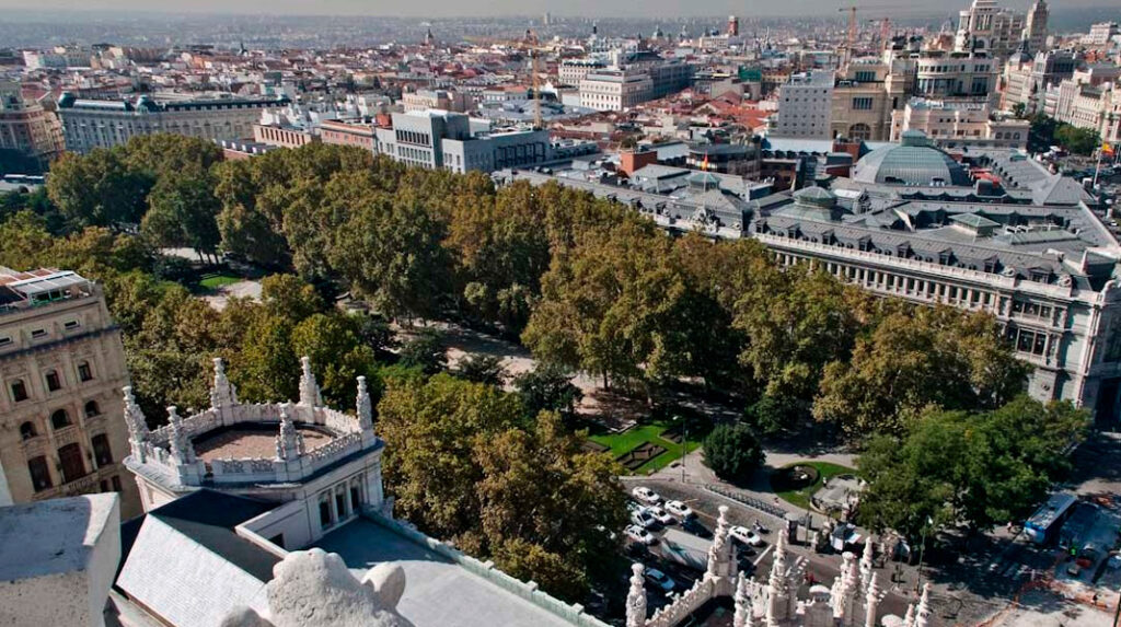 Panorámica del Paseo del Prado desde el Palacio de Cibeles.